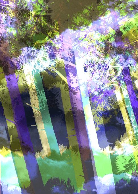 bloc_image_portrait_arbres